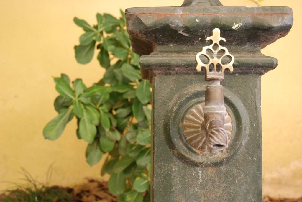Garden, The Beehive Rome