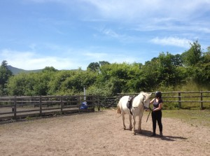 Horse riding at Cantref Riding Centre