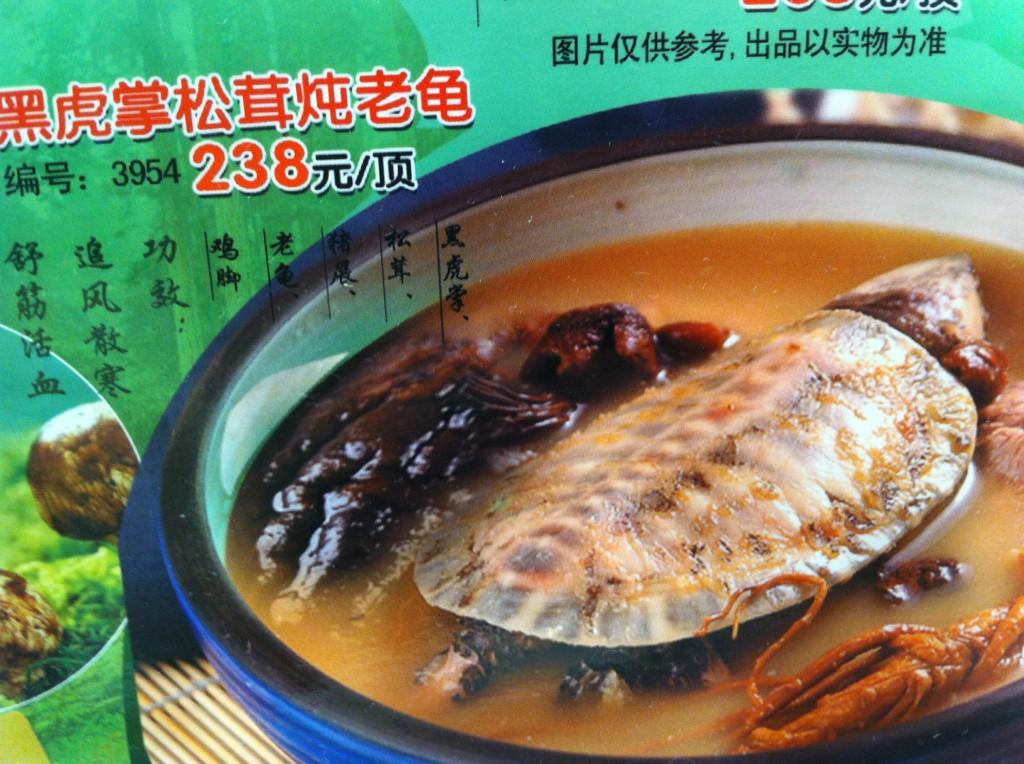 Turtle soup, anyone..?