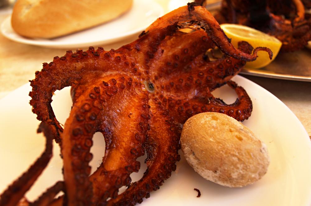 Octopus-El-Cine-Los-Cristianos-Tenerife