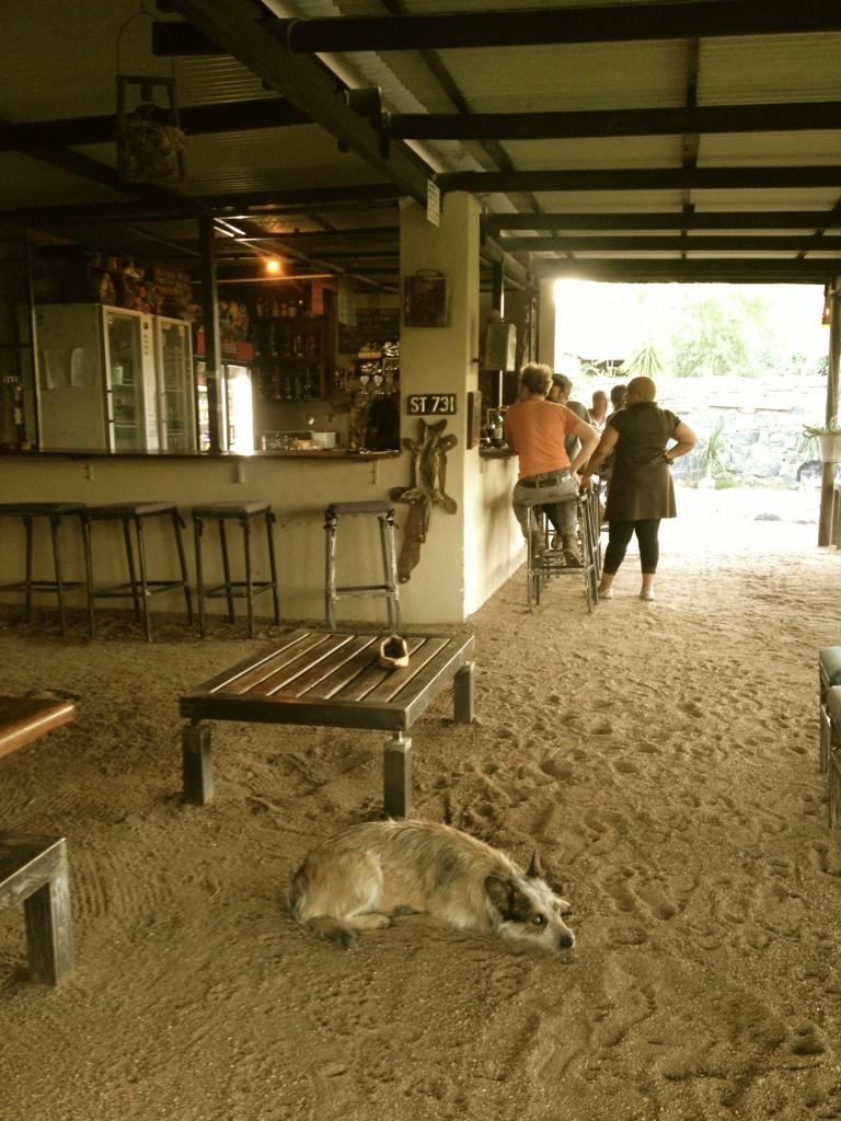 The boathouse bar, Growcery Camp. Nice bar and a very cool space.