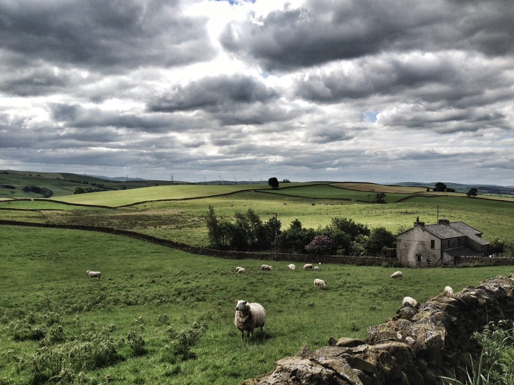 When you see scenes like this, you realise why Yorkshire is called 'God's own country'