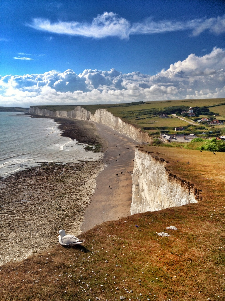 Unmissable: White cliffs of Beachy Head