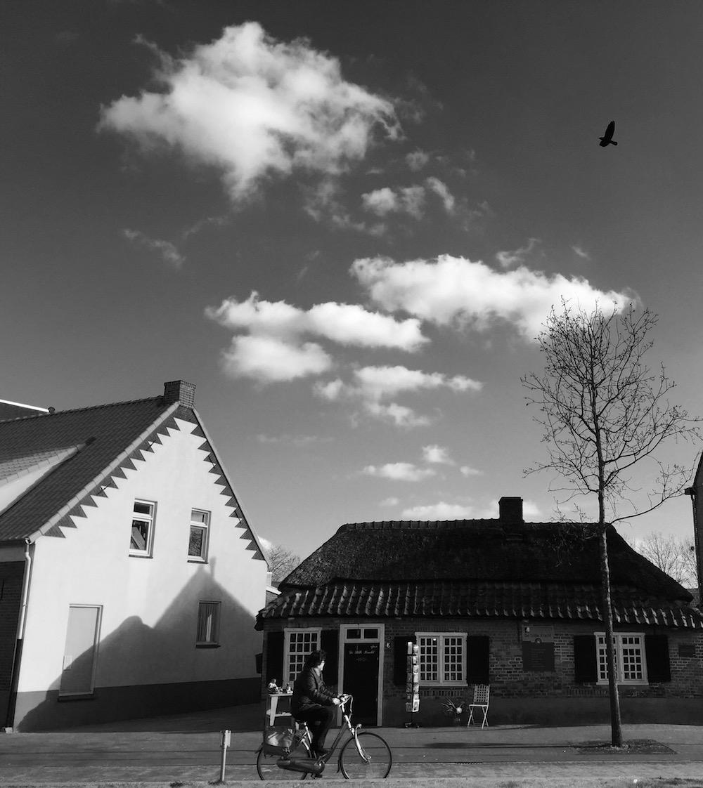 Vincent van gogh in 40 pictures 20 songs fullsizerender 3 fandeluxe Gallery