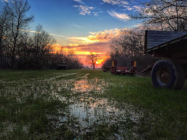 Sunset from the Caseificio Hombre Bio Farm