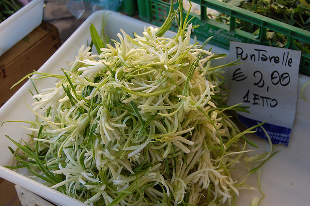 Puntarelle on sale at Campo de Fiori