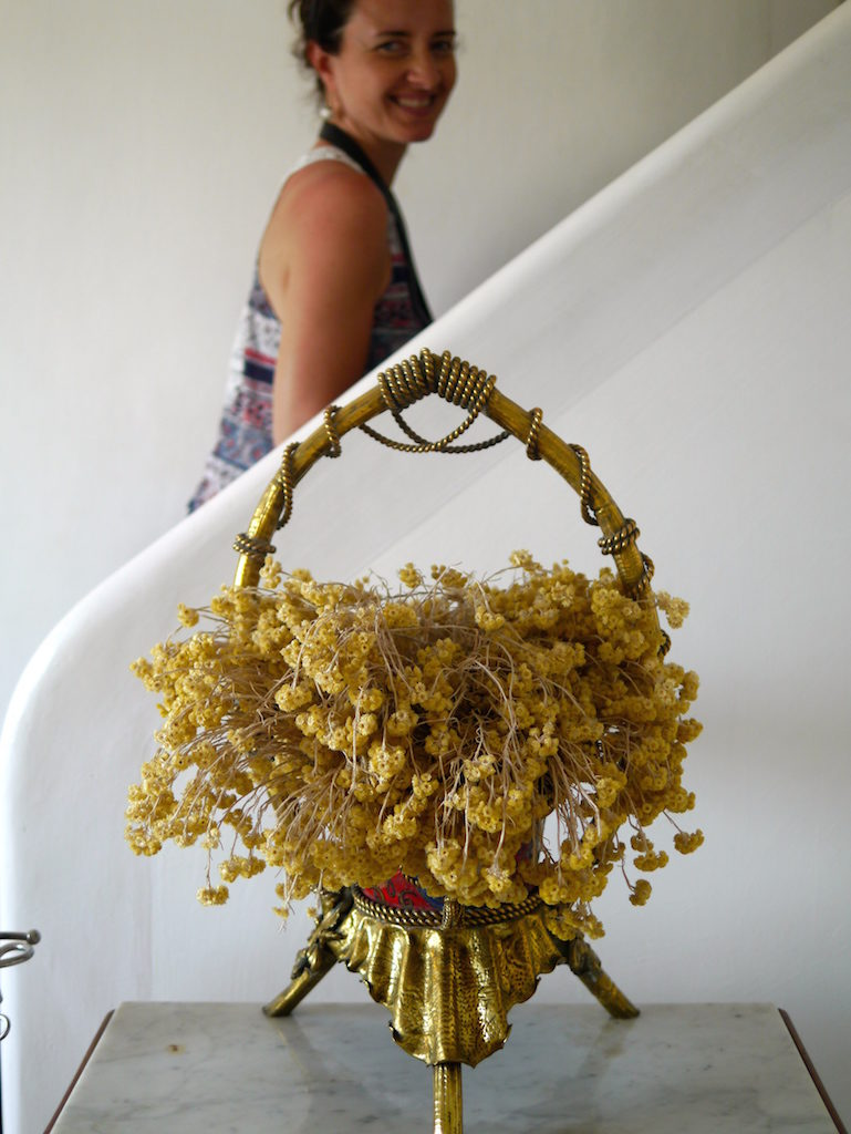 Gala's beloved hello flowers: She gathered her beloved yellow flowers from the rocky hills around, drying them into wonderful bunches