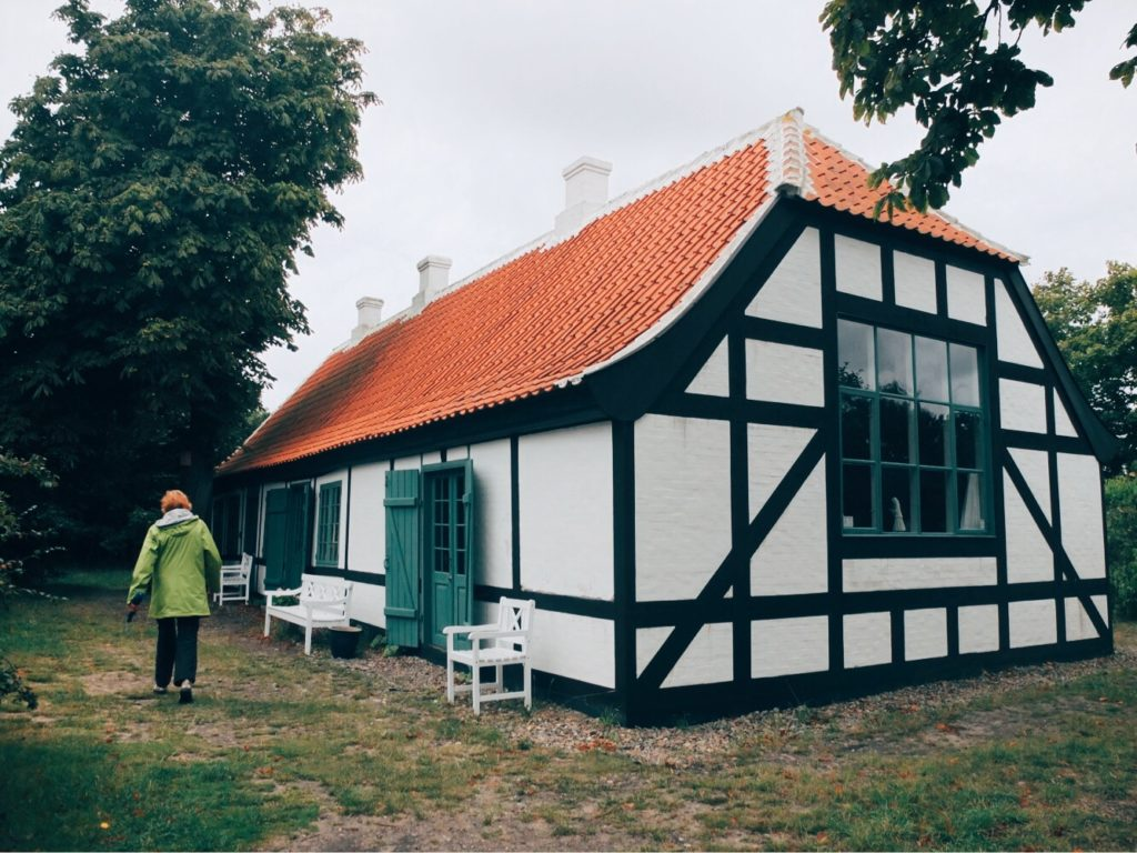 skagen houses