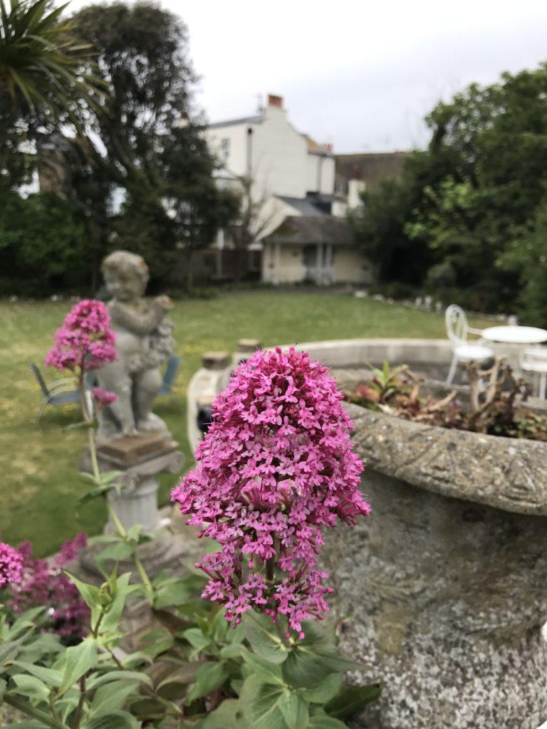 Garden. Bleak House Broadstairs
