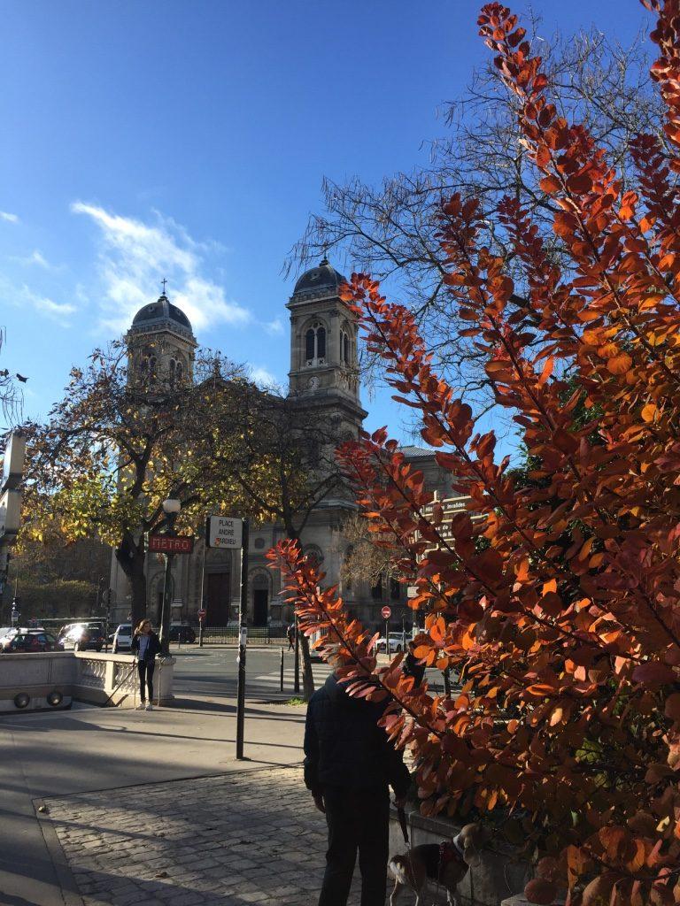Elise Saint Francois Xavier Paris