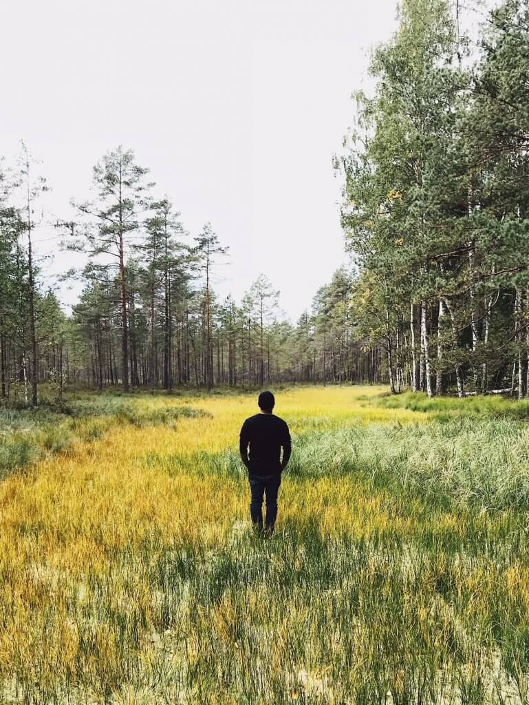 wild-mushroom-foraging-Latvia
